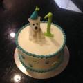 Dog Themed Smash Cake
