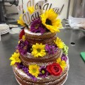 Unfrosted Chocolate Hazelnut Cake